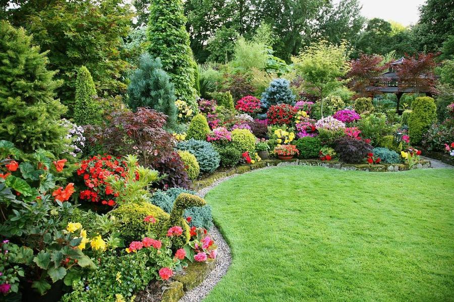 Как правильно ухаживать за садом