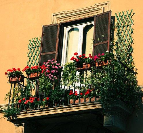 Цветущий балкон в городском пейзаже