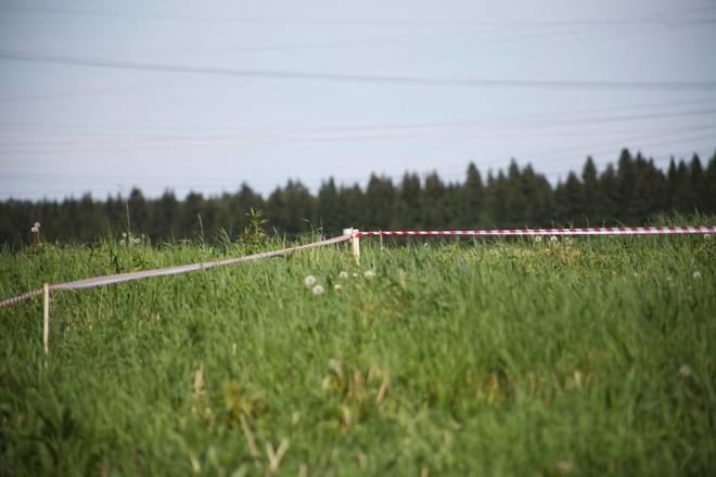 Зачем нужно знать сведения по земельным участкам в России